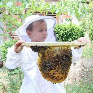 истински мед цена пчелни продукти
